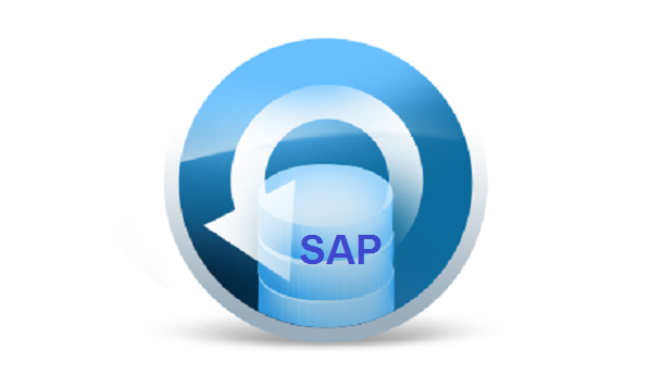 Idoc from SAP to SAP