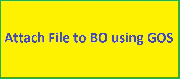 Sample program to attach any file from application server to any Business Object