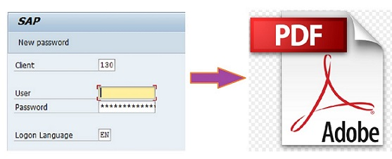 How I used SAP Adobe Form as my personal PDF editor
