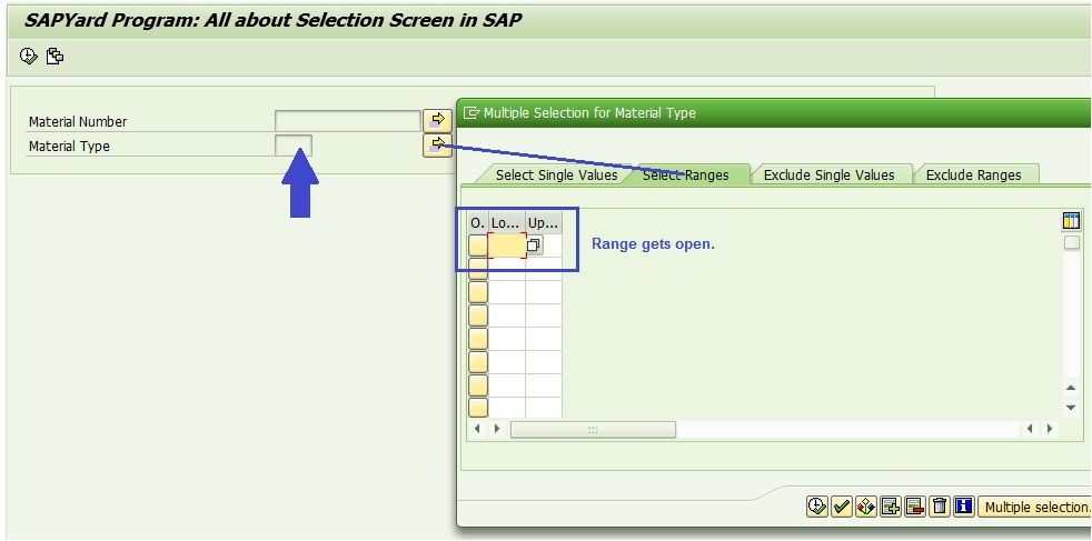 Selection Screen In Sap