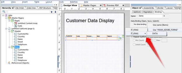Binding data in Adobe Forms