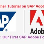 SAP Adobe Interactive Form Tutorial. Part I. First Adobe Form