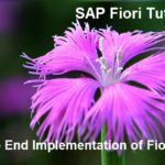SAP Fiori Tutorial. Part II. End to End Implementation of Fiori App
