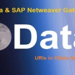 OData and SAP Netweaver Gateway. Part III. Query Options in OData Service URI
