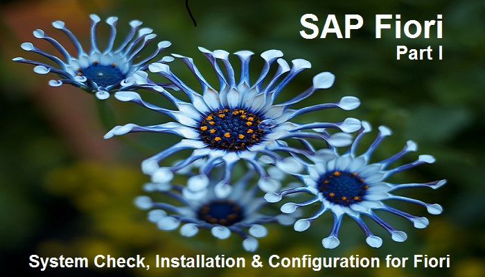 Make your system ready for SAP Fiori